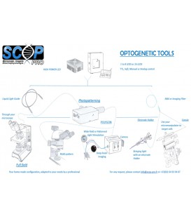 Optogenetic tools