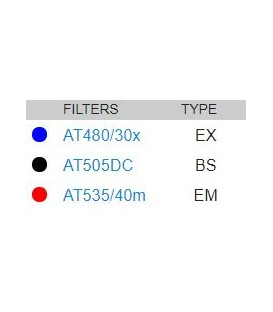 39002-AT-EGFP/FITC/CY2/Alexa488