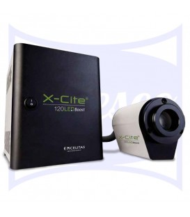 Xcite Led Solution