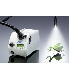 Schott KL2500 LED
