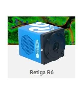 Caméras Retiga R6